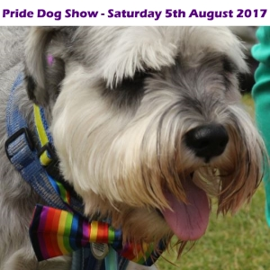 Plymouth Pride Dog Show