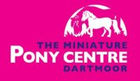 The Miniature Pony Centre Dartmoor